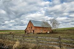 IMG_0643 pp small (ttran93) Tags: palouse washington red barn horse