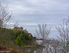 Culzean Castle (Rourkeor) Tags: culzean castle nts spring 1777 historic sea islands buds branches architecture horizon calm tranquil sony sonyrx1r rx1r fullframe carlzeiss zeiss sonnar t 35mm ayrshire maybole scotland unitedkingdom gb