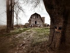 should I stay or should I go? (BillsExplorations) Tags: barn notresspassing farm abandoned decay ruraldecay forgotten old dairy ruins abandonedfarm abandonedillinois barnsandfarms capron silo