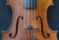 Detail of an old Italian violin (frankmh) Tags: musicalinstrument violin hittarp skåne sweden indoor