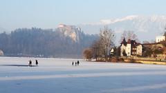 skating on the lake (my lala) Tags: slovenia lake bled skating winter white