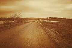 Country Road, Spring (Dave Linscheid) Tags: gravelroad country rural agricultural mn minnesota usa texture textured