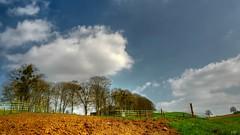 Invitation à la campagne (YᗩSᗰIᘉᗴ HᗴᘉS +5 400 000 thx❀) Tags: sky bluesky clouds trees namur nature natural campagne campaign prairie pré fences belgium belgique hensyasmine leica leicaq