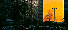 Back home (Franco D´Albao) Tags: francodalbao dalbao huaweipralx1 ocaso sunset atardecer luscoefusco twilight ciudad city urbano urban calle street vigo balaídos coches cars regreso