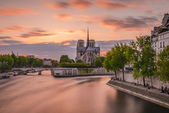 Romantic evening in Paris (Sizun Eye) Tags: paris notredamecathedral notredame cathedral cathèdrale seine riverside seineriver longexposure poselongue leefilters nisifilters sunset spring france iledefrance romantic romantique quaisdeseine bridge trees clouds orange sizuneye tamron2470mmf28 nikon d750 lee bigstopper leebigstopper gnd tamron 2470mm gettyimages