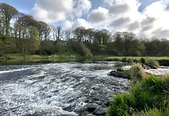 River Don Danestone Country Park Aberdeen Scotland 30/4/17 (Dano-Photography) Tags: danestonecountrypark summer spring winter autumn walk scotia escocia ecosse scotland scottishhighlands estuary pool lake forest woods aberdeen bridgeofdon donside tillydrone danestone iphone7plus iphone countryside nature 2017 dano countrysidewalks naturewalks bluesky clouds