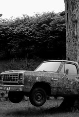 Ram (baltoskins) Tags: people blackandwhite bw color tree art truck canon outside photography 50mm iso800 spring md flickr shadows random may maryland places columbia things nighttime daytime local ram f71 subjects eosrebel values t3i merriweather 1400 wineinthewoods 600d 2013