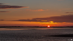 End of a day, the sun almost gone (BraCom (Bram)) Tags: sunset sun holland birds silhouette clouds canon reflections coast zonsondergang widescreen nederland thenetherlands vogels wolken 169 haringvliet zon stellendam silhouet kust zuidholland goereeoverflakkee spiegeling southholland canonef24105mm bracom canoneos5dmkiii