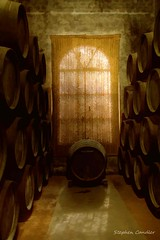 Shrouded Window (Light+Shade [spcandler.zenfolio.com]) Tags: windows spain wine barrels interior andalucia winery espana bodega sherry andalusia vino lightshade jerezdelafrontera stephencandler realtesoro stephencandlerphotography spcandler httpspcandlerzenfoliocom