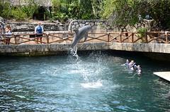 Cancun-42 (Victor Soria) Tags: springbreak cancun alic 2013 elsa70200 vicbest