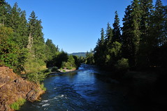 DEH_7111 (sobca) Tags: oregon river oakridge willamettenationalforest highway58 middleforkwillametteriver greenwaterspark 97463 greenwatertrail larisonrocktrail