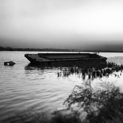Wreck, Basra, Iraq