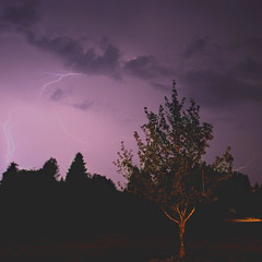 Sky is Royal (ColtenARocha) Tags: sky storm tree nature clouds canon dark scary purple extreme midnight strike lightning 1740 1740l canon30d
