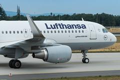 Lufthansa Airbus A320-214(WL) D-AIZX (842418) (Thomas Becker) Tags: lufthansa dlh airbus a320214wl a320214 a320200 a320 daizx star alliance msn 5741 060813 davvt 140813 lh1407 belgrade beg fraport flughafen airport aeroport aeropuerto aeroporto fra eddf frankfurt plane spotting aircraft airplane avion aeroplano aereo 飞机 vliegtuig aviao аэроплан samolot flugzeug germany deutschland hessen rheinmain nordwestlandebahn nordwest landebahn northwest nikon d800 nikkor 80400g fx raw aoka ak4nii holux m1000 gps aviationphoto 130622 taxiing nose shot geotagged geo:lat=50041 geo:lon=8525333 aerotagged aero:airline=dlh aero:man=airbus aero:model=a320 aero:series=200 aero:special=wl aero:tail=daizx aero:airport=eddf