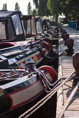 Sawley Marina Boats (RMac Photography) Tags: light sun colour tree sunshine marina lens boats for nikon colours leicestershire sale jetty details rope mooring kit midday barge harsh cpl sawley polariser hoyacpl d3000