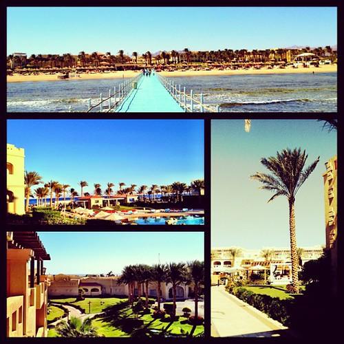 @rixossharm under the sun #rixos #sharm