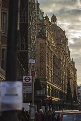 Harrods (_alexjd) Tags: city travel london alex beautiful canon shopping eos rebel 50mm prime amazing harrods fixed amatuer t3i alexjames focal 600d canoneos600d rebelt3i