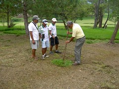"Tree Planting • <a style=""font-size:0.8em;"" href=""http://www.flickr.com/photos/69054197@N03/10648731573/"" target=""_blank"">View on Flickr</a>"