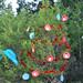 Trees_of_Loop_360_2013_045
