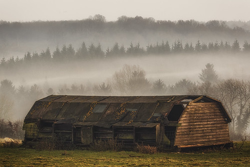 The Barn and the Mist