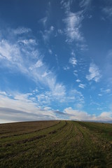 Field and Sky (tim.clarke37) Tags: clouds downs sussex lane fields downland sompting halewick