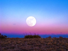 Moon Rise (Tom Herlyck) Tags: blue sunset sky moon cold grass clouds amazing colorado pueblo fullmoon elements pueblocounty wolfmoon trolled southeastcolorado elements8 photoshopelements8