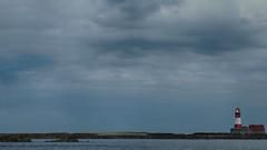 Longstone Lighthouse, Outer Farne (Merv Williams) Tags: sea sky lighthouse water clouds pen islands ships olympus grace northumberland seals outer olympuspen darling farne farneislands ep3 appleaperture niksoftware outerfarne