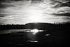 P1070520 B&W (big_ianpaulbullivant) Tags: blackandwhite colour sunrise landscape lakes lincolnshire paths cleethorpes eastcoast aficionados northeastlincolnshire pentaxart cleethorpescountryparkbirds