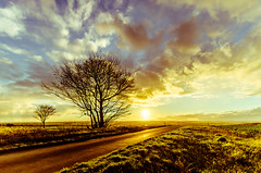 The Road To... (Lee532) Tags: road sunset sky cloud sun tree silhouette landscape nikon colours north sigma lincolnshire 1020mm d511