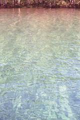 (Photomawf) Tags: water 35mm washington decal contaxg2 coasting photomawf
