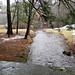 Mount Tom, Cascade Brook, High Water