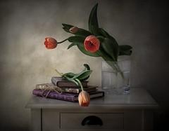 Tulipanes y libros (JACRIS08) Tags: