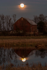 Super Moon and Barn Series #3 (Patti Deters) Tags: farm moon water super red barn trees fields marsh beaverlodge pond reflection pink blue vertical landscape scenic dusk night evening architecture