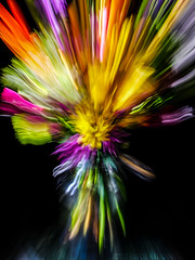 Floral Explosion (MacroMarcie) Tags: 7dwf 7dayswithflickr floral flowers longexposure exposure colorful colors spring movement blur fuji x20
