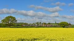 Full length (legomanbiffo) Tags: fields warwickshire north atherstone grendon wcml 390 class pendolino virgin