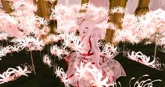 Usagi Hime (ilyasvelleTepes) Tags: second life aii usagi slink metraiya ez lfc deaddollz kimono fantasy secondlife ofuda charms rabbit flower shine koibito white