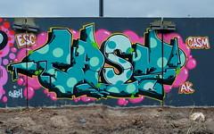 Graffiti (oerendhard1) Tags: graffiti streetart urban art vandalism illegal rotterdam zuid casm esc