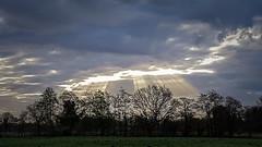 13 april 2017 - 7:45 uur (Harmen de Vries) Tags: assen assenoost drenthe sunrise zonsopkomst anreep schieven wolken clouds natuur nature pss:opd=1492178997