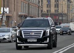 rus_м444кк77 (License plates spotter from Ukraine) Tags: cadillac escalade licenseplates ukraine kyiv номернізнаки м444кк77 україна київ russia