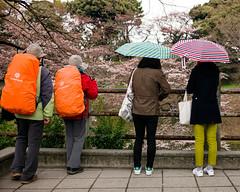 Tokyo50-32 (Diacritical) Tags: chiyoda japan tokyo street march312017 leicacameraag leicamtyp240 summiluxm11435asph f28 ¹⁄₂₅₀sec centerweightedaverage