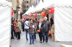 VII Fira d'Entitats de Voluntariat Social de Lleida (31.03.17)