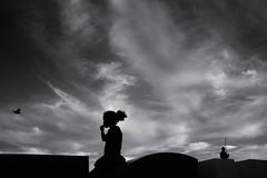Under a vast sky (fcribari) Tags: 2017 bw brasil brazil fujifilm fujifilmx100s pernambuco recife x100s bird birdinflight blackandwhite clouds fotografiaderua monochrome pretoebranco silhouette sky street streetphoto streetphotography