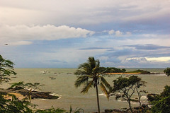bad weather announced... (@petra (away)) Tags: nature natural seascape palmtree coconuttree ocean atlantic island beforethestorm darkclouds boats shore rocks outdoors textured