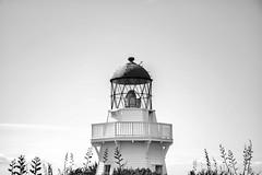 Manukau Heads Lighthouse (NickPaulsen) Tags: lighthouse manukau auckland scenery newzealand peninsula