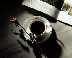 Morning Addiction! (traptiantiwary) Tags: morning flower flowerbud naturallight blackcoffee saucerandcup magazine text paper canon stilllife