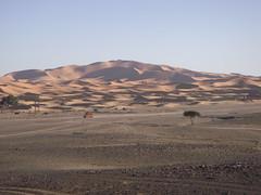 Journey to the Erg Chebbi Dunes (Rckr88) Tags: journey erg chebbi dunes ergchebbidunes near village merzouga morocco dunesofmerzouga dune sand desert deserts outdoors outdoor nature travel travelling africa sahara saharadesert