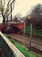Along the rails  #istanbul #gulhane #eminonu #alongthe rails (volkanrecepyetim) Tags: eminonu istanbul gulhane alongthe