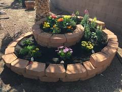 Spiral Garden (TheBeesKnees85) Tags: spiralgarden garden flower flowers diy spring summer spiral permaculture