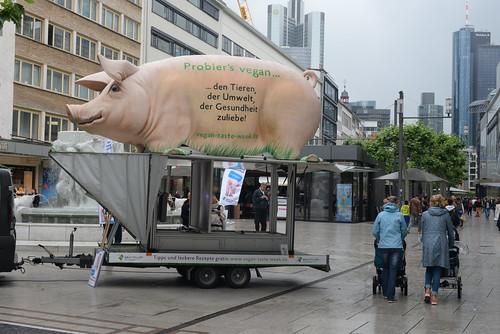 Pig protest Ziel FRA 5-30-16