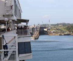Approaching lower Gatun Lock (Hear and Their) Tags: gatun locks panama canal norwegian pearl lower